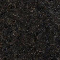 Black Pearl / Labrador Black